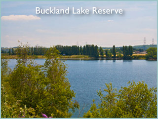 Buckland Lake Reserve